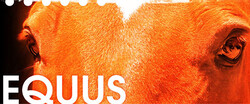 discount code for Equus tickets in San Jose - CA (City Lights Theater)