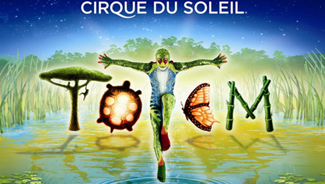 totem-cirque.jpg